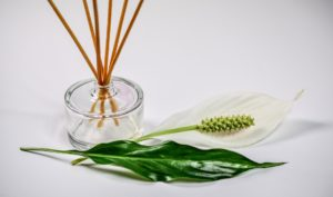home fragrance oils